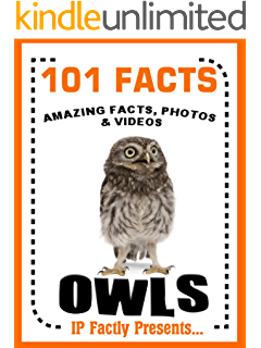 Owls! Fun Facts for Kids - An Owl Picture Book of the Snowy Owl ...