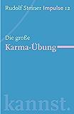 Die große Karma-Übung: Werde ein Mensch mit Initiative: Perspektiven (Impulse 12)