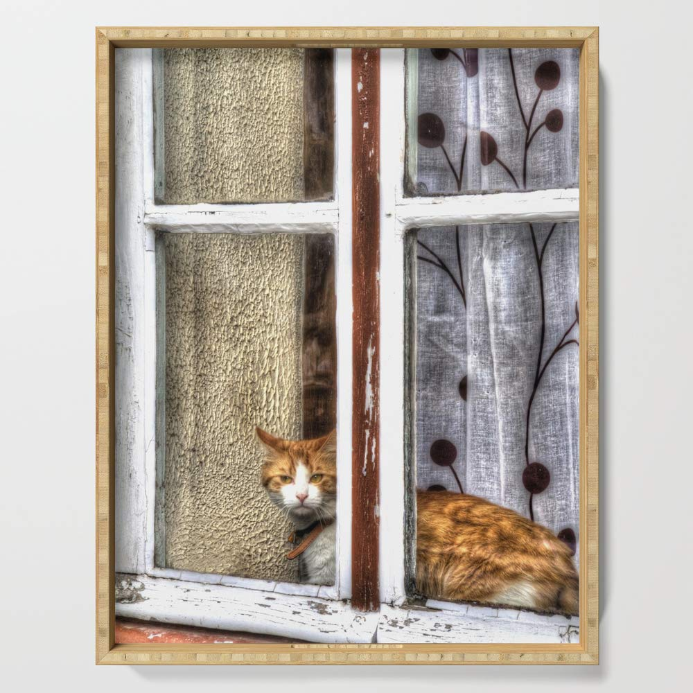 Society6 Serving Tray with handles, 18'' x 14'' x 1 3/4'', Red Cat in Window by gunadesign
