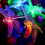 Qedertek Battery Christmas Lights, 7.34ft 20 LED Dragonfly String Lights, Waterproof Decoration Lighting for Indoor/Outdoor, Patio, Lawn, Garden, Party, Wedding (Multi-color)