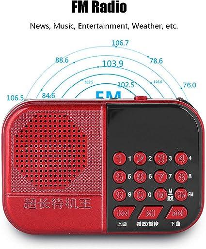 Amazon.com: Fosa - Reproductor de música portátil con mini ...