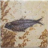 CafePress - Fish Fossil Ceramic Art Tile Coaster - Tile Coaster, Drink Coaster, Small Trivet