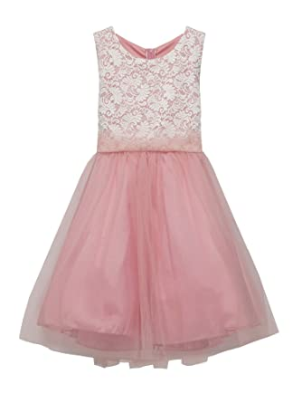 93a51894495e Amazon.com  Kid s Dream Big Girls Dusty Rose Lace Plus Size Junior ...