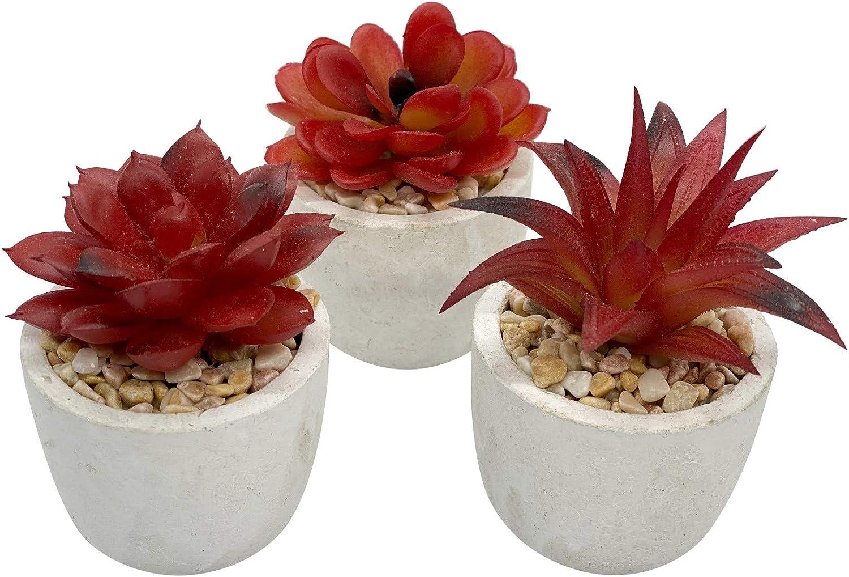 Artificial Mini Potted Succulent Plant Decor (Set of 3) | Amber Red Color | Fake Succulent Plant | Office Decor, Bathroom Decor, Farmhouse Decor, Kitchen Decor | Faux decore | Home Decor Clearance