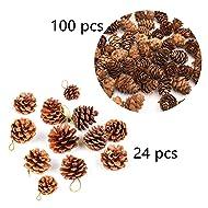 D-Doner Natural Pine Cones, Rustic Mini Brown Pine Cones,Decorative Fall Winter Holiday Home Decor Vase Filler,Total 124 PCS