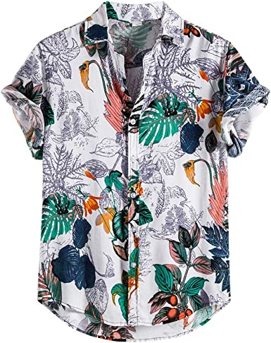 Camisa Hawaiana de Hombre y Traje de baño, Hirt Camisa ...