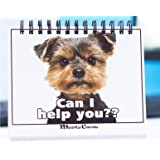 Office Gift for Dog Lovers - Moodycards! Make Everyone Laugh with These Adorable and Hilarious Dog Memes - Let The Dogs…