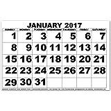 Low Vision Print Calendar - 2017
