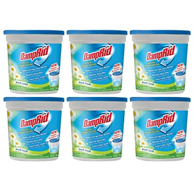 .com - Damprid Refillable Moisture Absorber Fresh Scent, 10.5 Ounce, Pack of 6 -