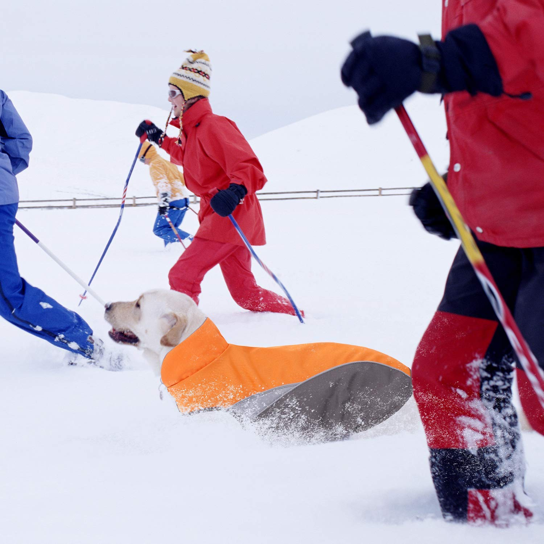 Impermeabile Riflettente Esterno Giacca per Cani di Piccola Taglia S Petto: 40-50cm, Nero Kismaple Cane Foderato in Pile Cappotto Invernale per Cani