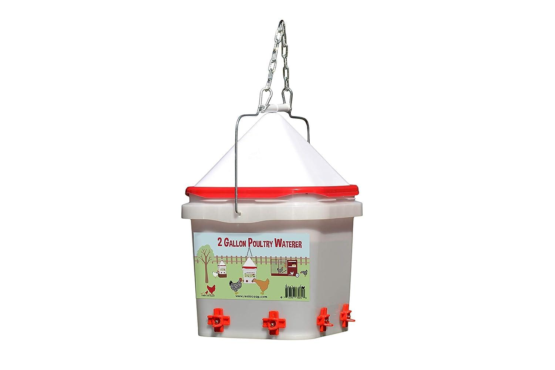 2 Gallon Chicken Waterer - Horizontal Nipple Setup 711p77v1swL