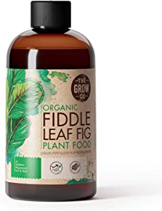 Organic Fiddle Leaf Fig Tree Plant Food - Liquid Fertilizer for Potted Figs - Nutrient Rich Formula to Grow Healthy Indoor and Outdoor Ficus Plants (8 oz)