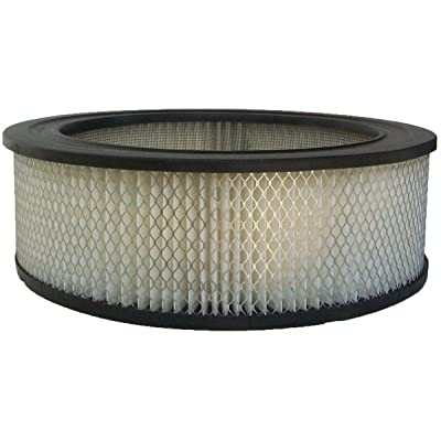 Luber-finer AF14 Heavy Duty Air Filter: Automotive