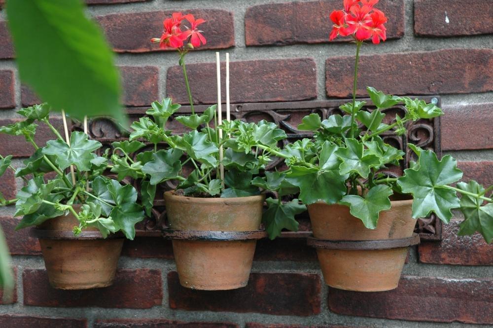 Esschert 18 x 52 x 16cm Cast-Iron Flower Pot holder Classic 3-Pots Brown