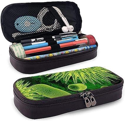 Estuche de cuero para lápices Bacterias y virus Bolso para bolígrafo verde Bolso para bolígrafo Bolso para estuche: Amazon.es: Oficina y papelería