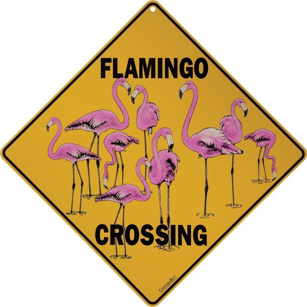 Amazon.com : Flamingo Crossing 12\