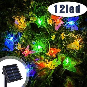 12 LED Guirnalda de Luces solares Farolillos Guirnalda Luces Guirnalda de Luces Solar Mariposa Luz jardín Luces solares para jardín al Aire libreLED Luces Solar Exterior: Amazon.es: Iluminación