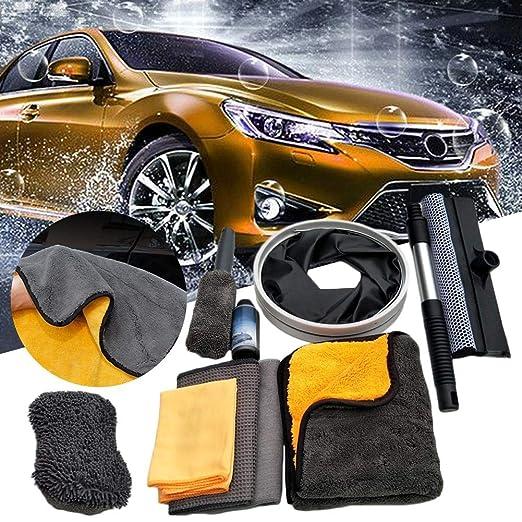 Dubleir 10 Piezas Kit de Limpieza de Autos Suministros de Lavado de Coches Cepillo Microcibra Pa/ñuelo Toallas de Pulido de Cera para Cuidado del