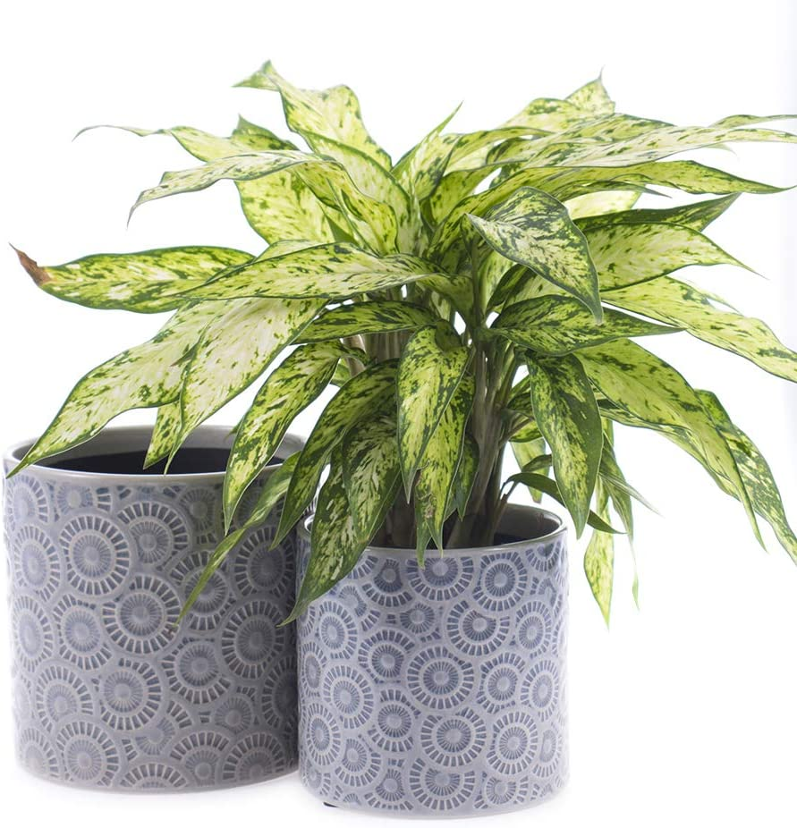Voevaca Medium Plant Pots - 5.5 and 6.8 Inch Cylinder Ceramic Planters,Garden Flower Container for Indoor Outdoor, Set of 2…