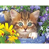 Springbok Alzheimer & Dementia Jigsaw Puzzles - Garden Helper - 36 Piece Jigsaw Puzzle - Large 23.5 Inches by 18 Inches Puzzle - Made in USA - Extra Large Easy Grip Pieces