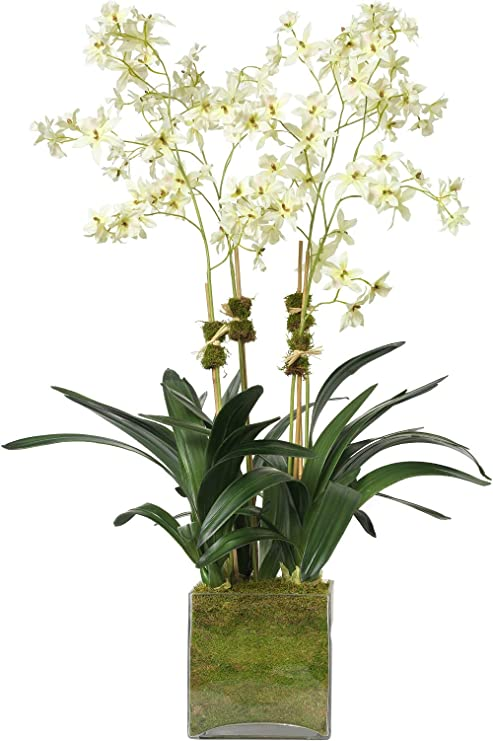 Diane James Faux Cream Oncidium Orchid In Glass Cube Home Kitchen