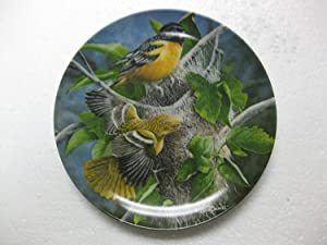 "Edwin M. Knowles-The Baltimore Oriole by Kevin Daniel-3rd Issue In The Encyclopedia Britannica Birds Of Your Garden Collection- 8.5"" Diameter"