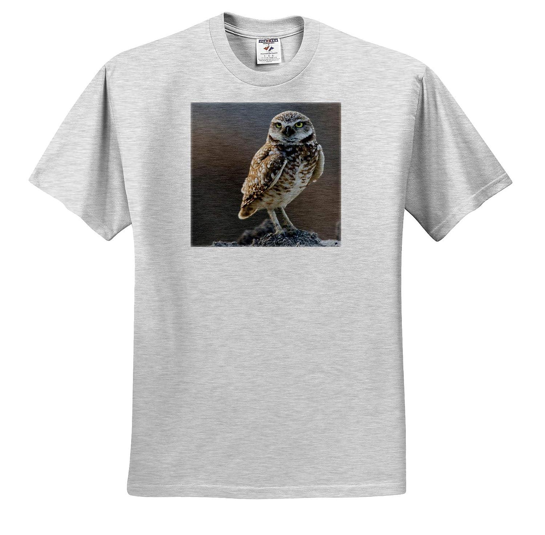 - Adult T-Shirt XL 3dRose Danita Delimont ts/_313952 Burrowing Owl Owls