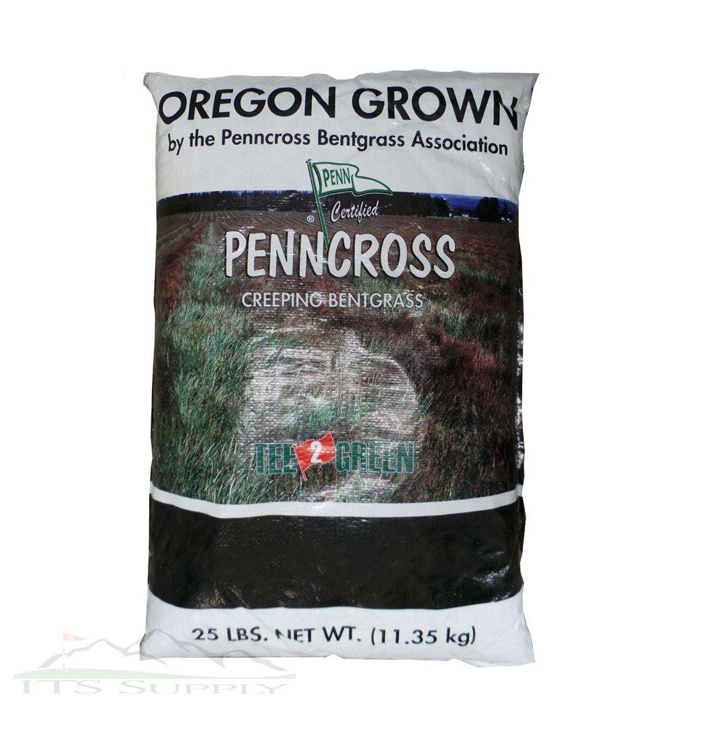 Penncross Bentgrass Seed - 25 Lbs.
