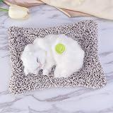 VORCOOL 本物そっくりに眠る猫のぬいぐるみ 活性炭 車 車内 空気 浄化 飾り 可愛い (白い)