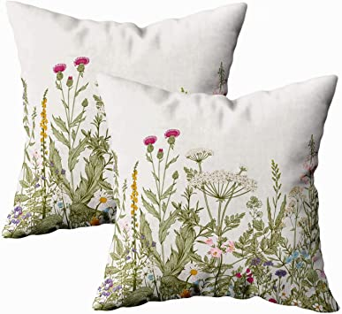 Musesh Sofa Pillow Covers, Pack of 2 Floral Border Herbs and Wild Flowers Botanical Engraving Style Colorful for Sofa Decorative Pillowcase 18X18Inch Pillow Covers
