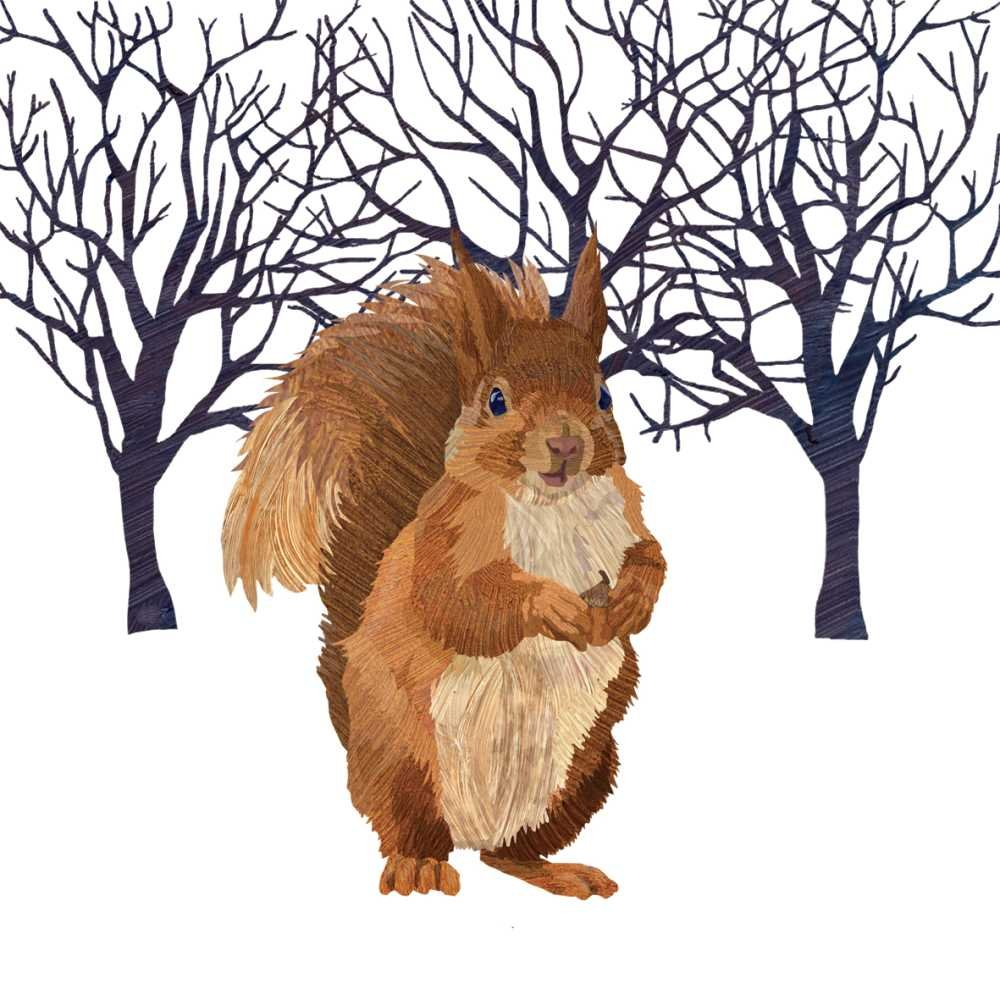 Paperproducts Design Winter Squirrel Beverage Napkins, 5 x 5'', Multi