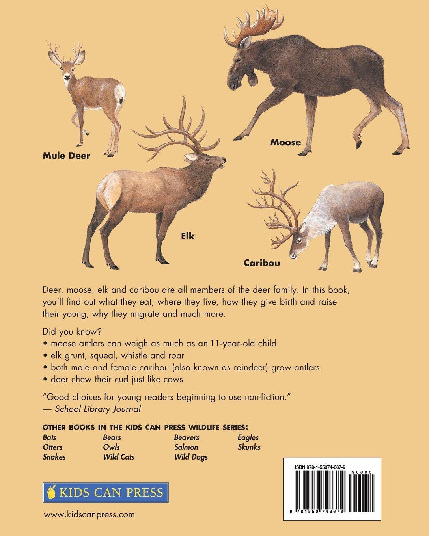 Deer Moose Elk And Caribou Kids Can Press Wildlife Series