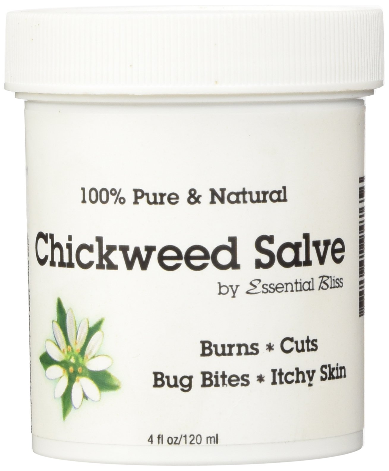 Chickweed Salve Soothes Burns Cuts Bug Bites