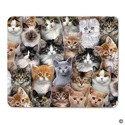msmr alfonbrilla para ratón – Alfombrilla de ratón ramo de gatos de ratón para juegos portátil