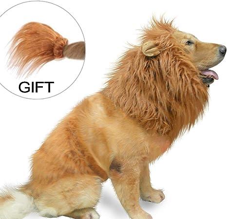 IN HAND Peluca de león para Perro y Gato, Disfraz de león para ...