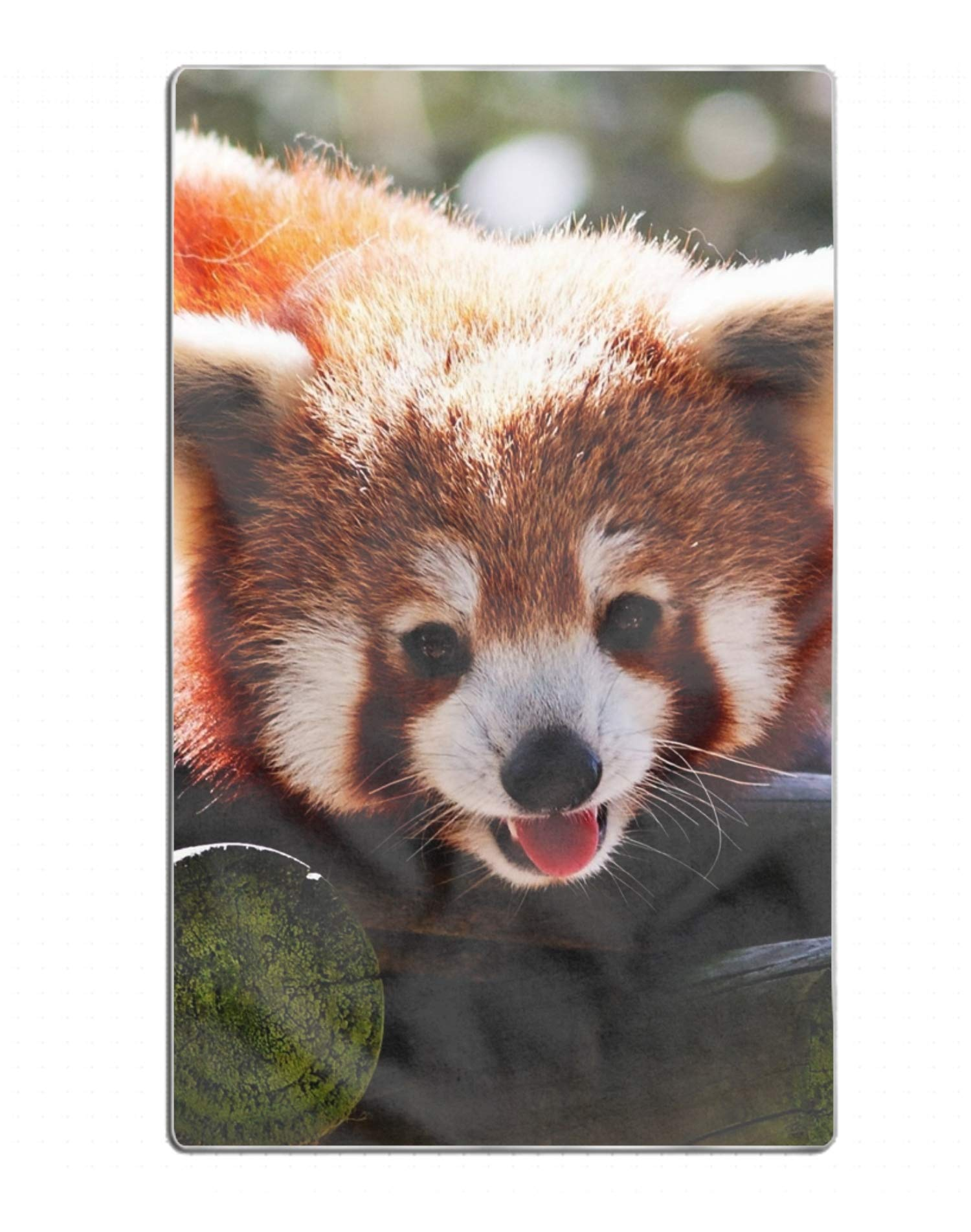 EHLMGSC Animal Red Panda Printed Shower Bath Towels Highly Absorbent for Beach, Pool and House 31.5 x 51.2 inch
