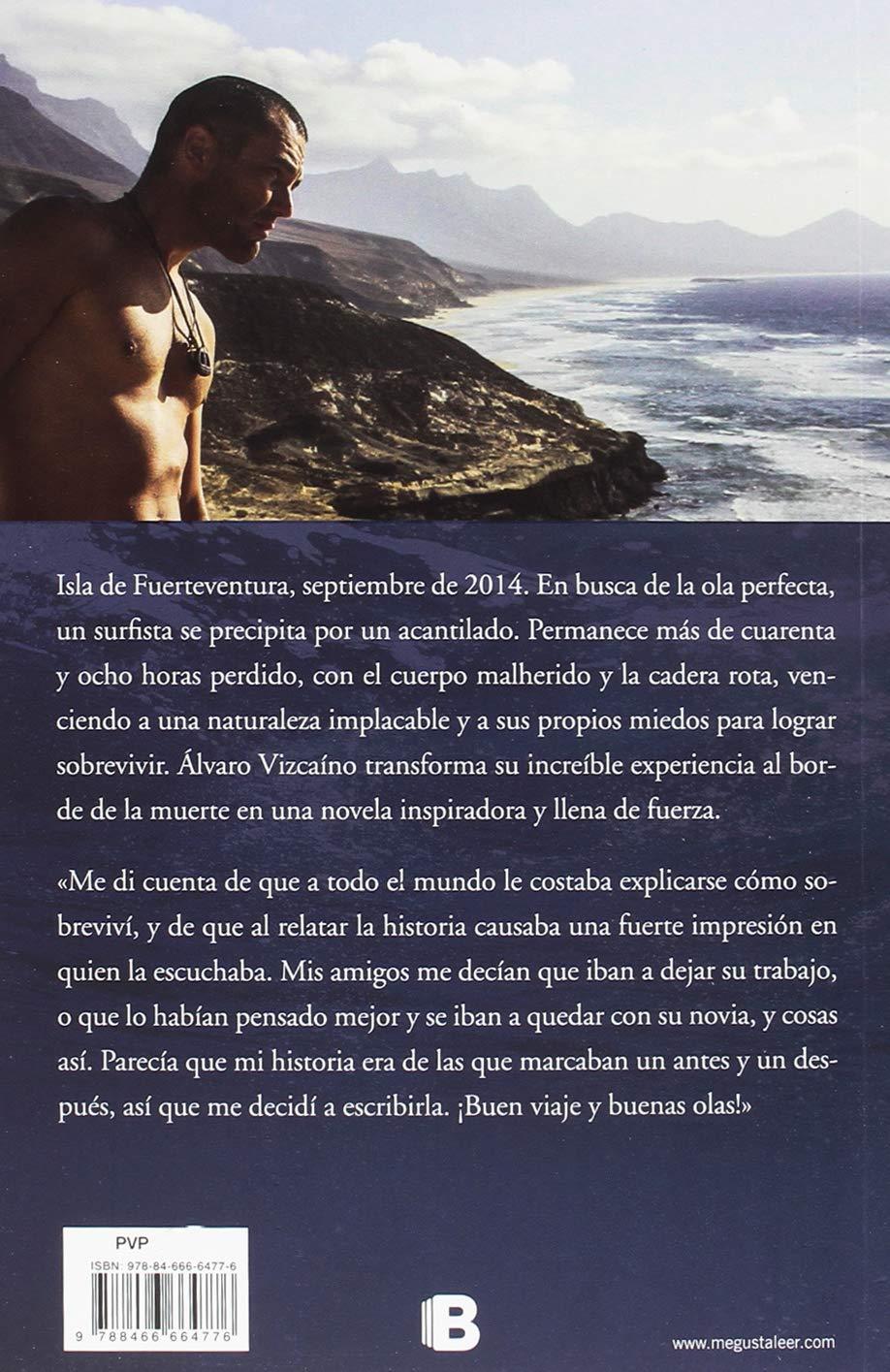 Solo (Varios): Amazon.es: Álvaro Vizcaíno: Libros