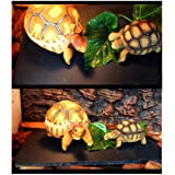 Tfwadmx Reptile Basking Platform, Tortoise