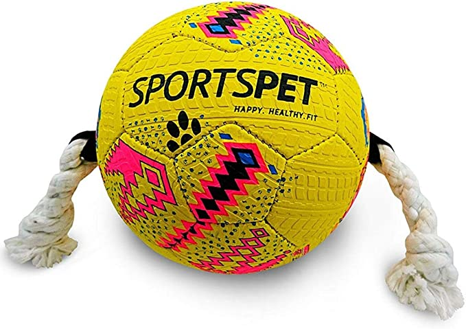 Sportspet - Pelota de juguete con asas para perros: Amazon.es ...