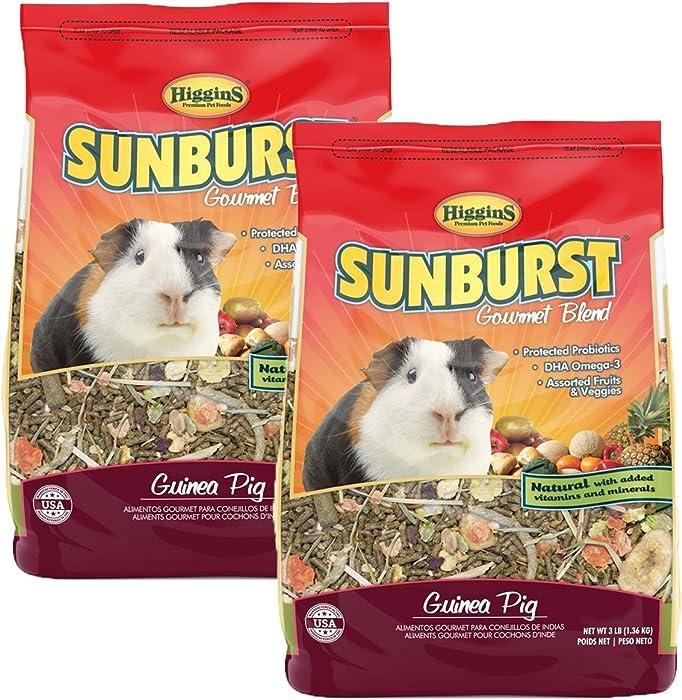 Higgins Sunburst Gourmet Food Mix for Guinea Pigs, 6 Pound