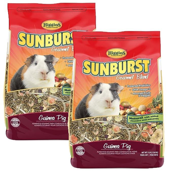 Amazon.com: Higgins Sunburst Gourmet cobaya alimentos Mix ...