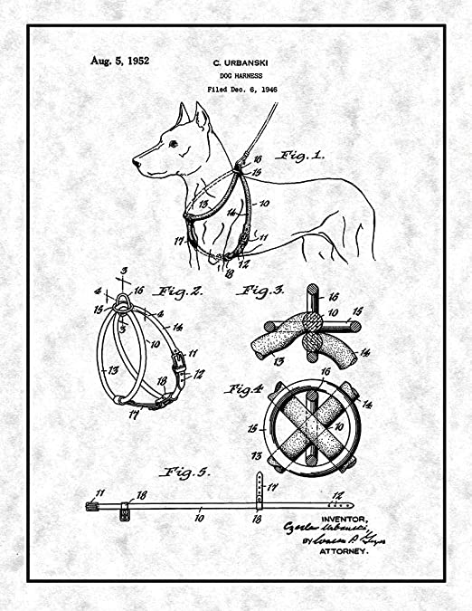Amazon Com Dog Harness Patent Print Gunmetal With Border 24 X 30