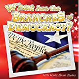 What Are The Branches of Democracy? (Little World Social Studies)