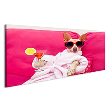 Canvas Wall Art chihuahua dog relaxing and lying, in spa