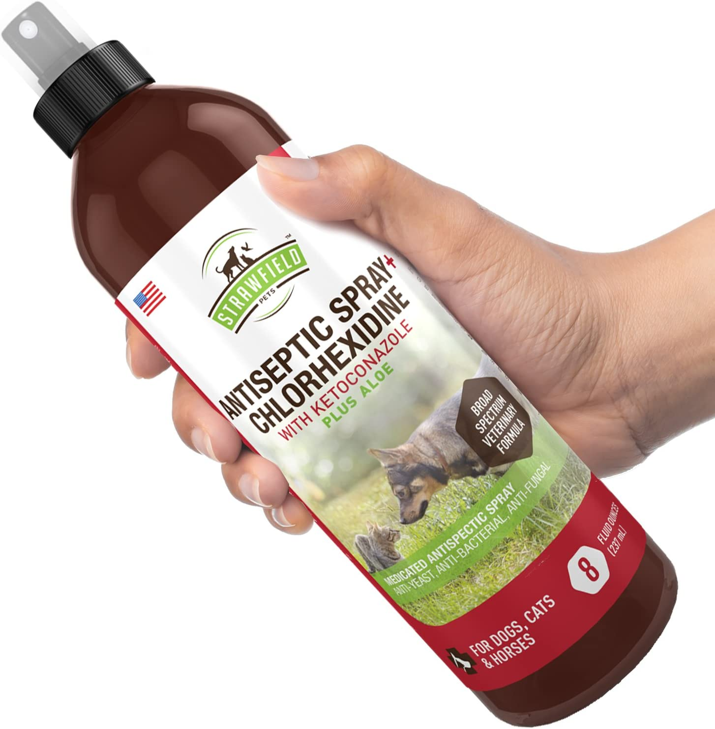 Chlorhexidine Spray for Dogs, Cats - Ketoconazole, Aloe - 8 oz - Cat, Dog Hot Spot Treatment, Mange, Ringworm, Yeast Infection, Itching Skin Relief, Allergy Itch, Acne, Antibacterial Antifungal, USA : Pet Supplies