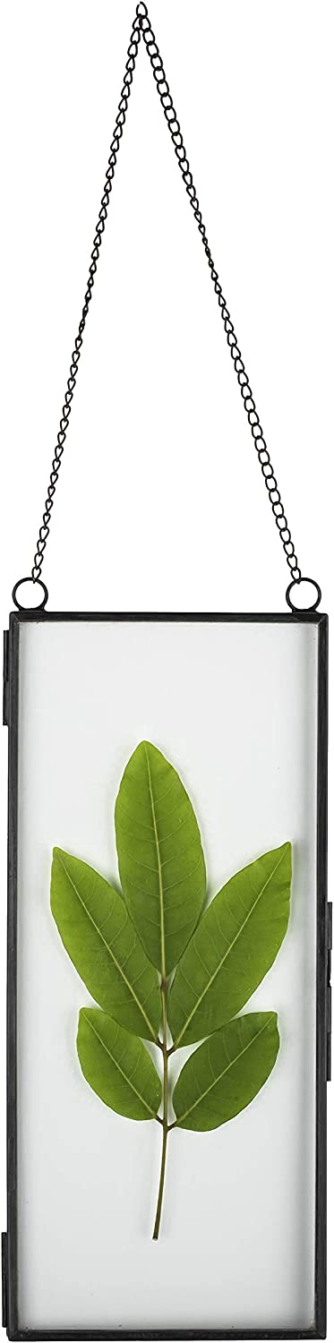 NCYP 4x9 inchs Black Clear Glass Picture Frame Wall Hanging Certificate Photo Plant Specimen Clip Copper Modern Home Geometric Vertical Decor Card Holder Display Gift, Glass Frame only