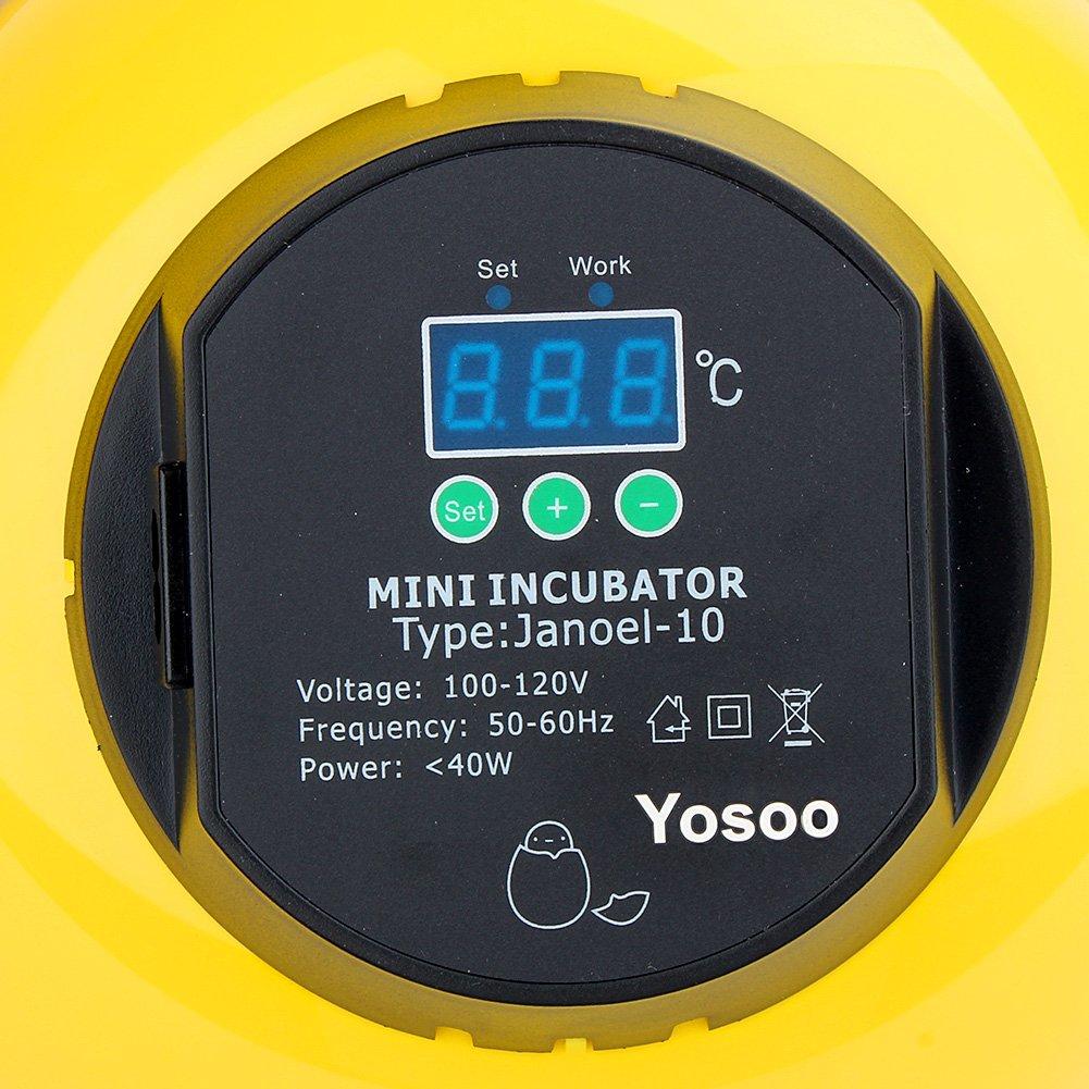 Zerone Incubadora de Huevos, 10 Huevos de Capacidad Mini Huevera Digital Automática con Control de Temperatura para Huevos de Gallina de Pato (10 Huevos): ...