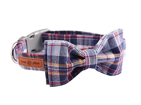 Lionet Paws - Collar para Gato y Perro con Lazo, Cuello de algodón ...