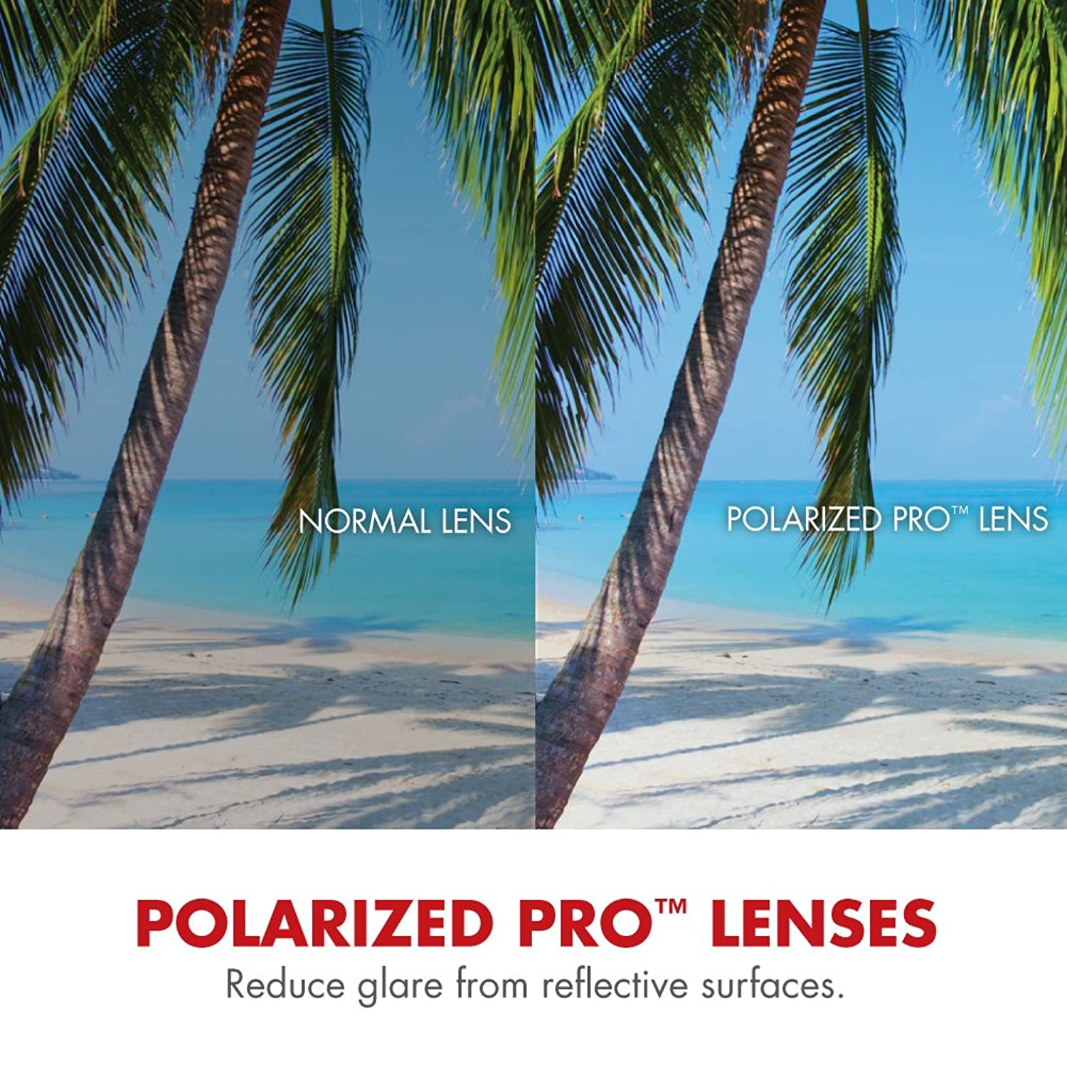 b035c74102b0 Amazon.com  Solize Color-Changing Polarized Sunglass by Del Sol - Lifetime  Protection Against Theft