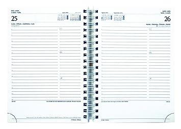 Lediberg 936965 - Agenda día por página, 16.8 x 24 cm, color ...